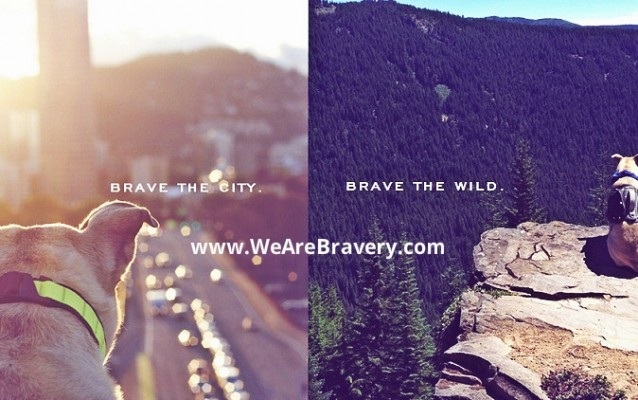 Bravery Dog Packs & Loyalty Goods