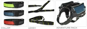 Bravery Dog Packs, Leashes, Collars