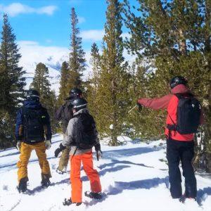 skiing backcountry sierras