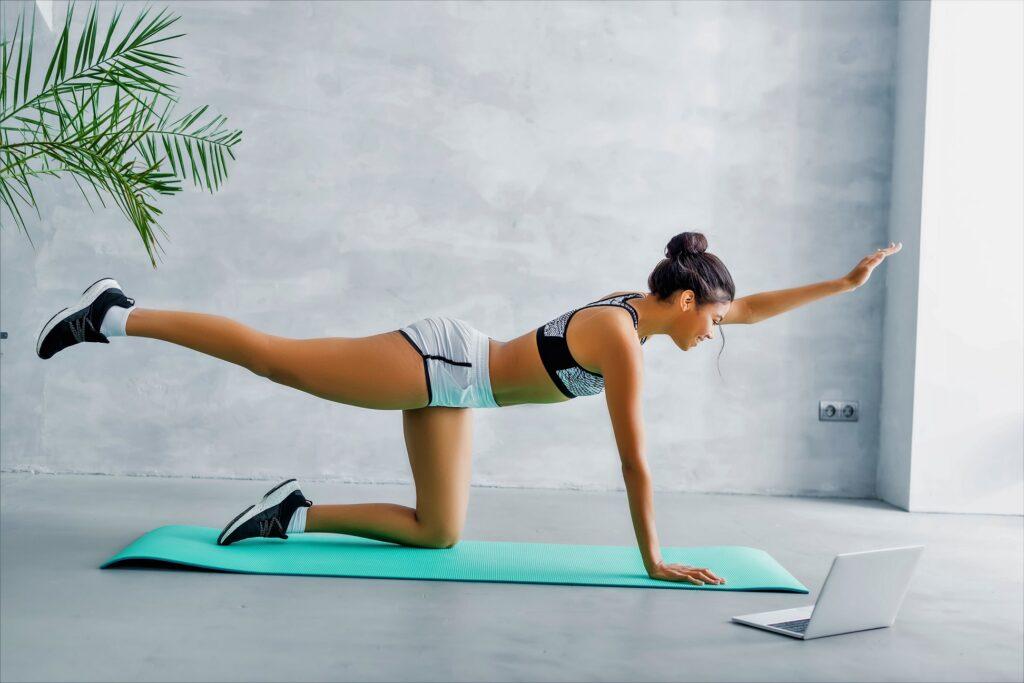home-ab-exercise-bird-dog-plank